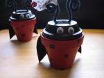 Ladybug Gift